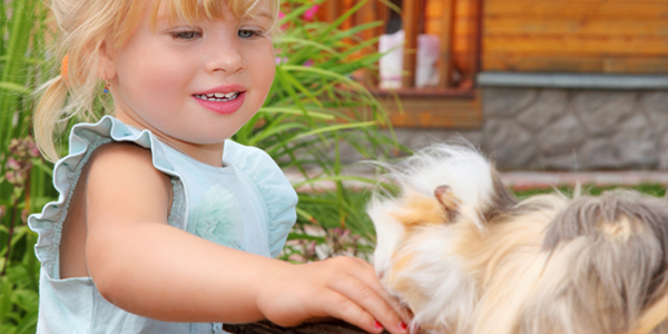Pet benefits for your Children
